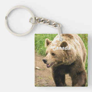 Canadian Grizzly Single-Sided Square Acrylic Key Ring