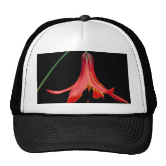 Canadian Lilly Trucker Hat