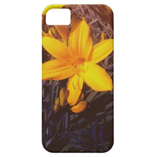 Canadian Lilly - iPhone 5 Cases