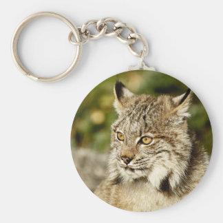 Canadian Lynx Basic Round Button Key Ring
