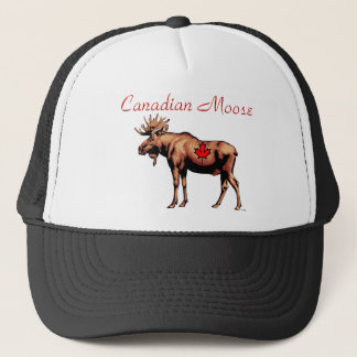 Canadian Moose Hat