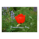 Canadian Remembrance Day- November+11th Poppy Cards