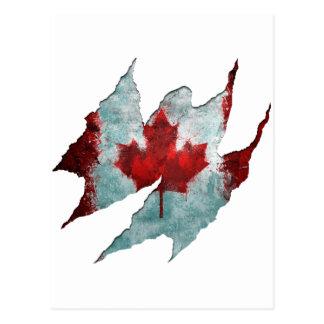 Canadian Rip Postcard