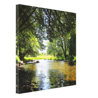 Canadian River Canvas Print