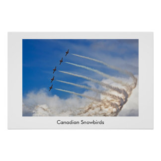 Canadian Snowbirds poster