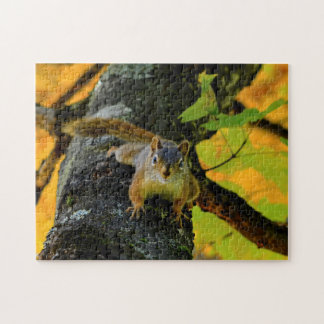 Canadian Squirrels. Jigsaw Puzzle