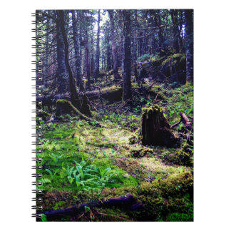 Canadian Wildlife Forest Notebook