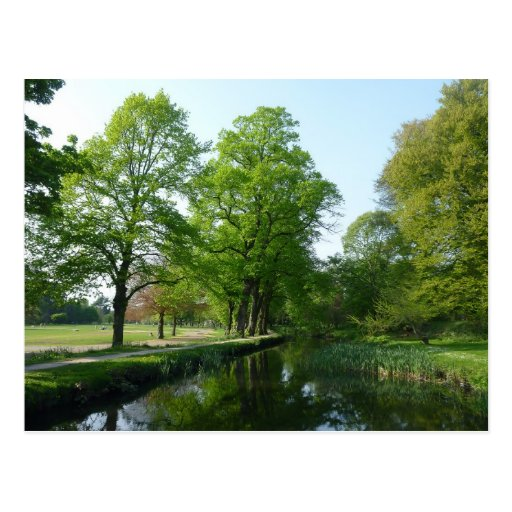 Canal - Bute Park, Cardiff Post Card