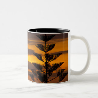 Canarian Sunset, Tenerife, Two-tone Mug