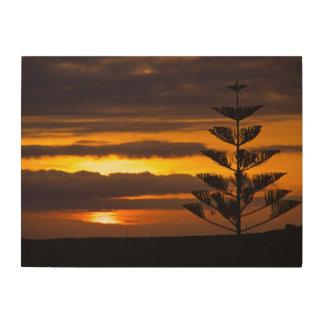 Canarian Sunset, Tenerife, Wood Wall Art