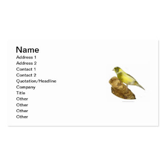 Canary Breeder's Business Card