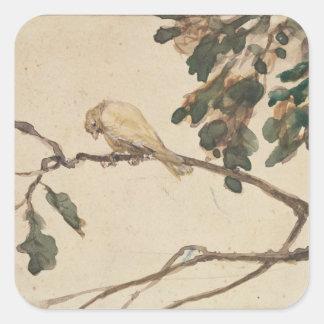 Canary on an Oak Tree Branch Square Sticker