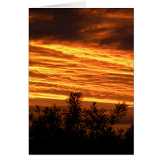 Canberra Summer Sunset Greeting Card