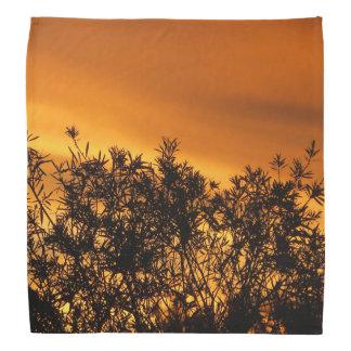 Canberra Summer Sunset Kerchiefs