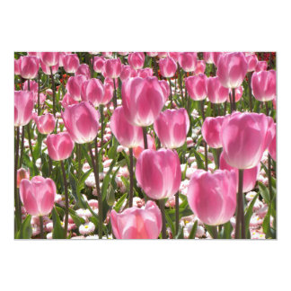 Canberra Tulips 13 Cm X 18 Cm Invitation Card
