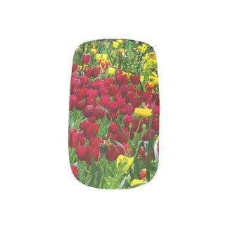 Canberra Tulips Fingernail Transfers