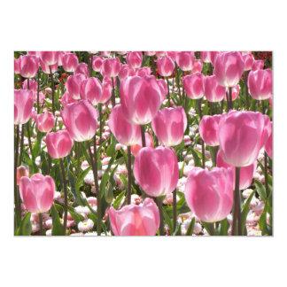 Canberra Tulips 13 Cm X 18 Cm Invitation Card