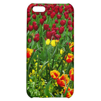Canberra Tulips iPhone 5C Case