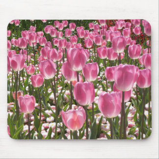 Canberra Tulips Mouse Mat