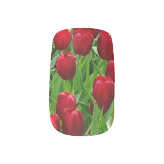 Canberra Tulips Nail Sticker