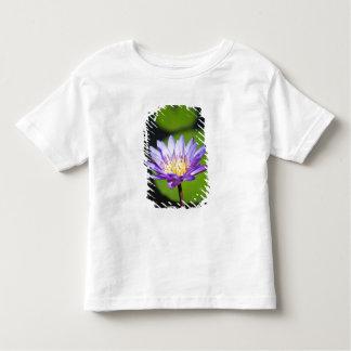 Cancun, Mexico Toddler T-Shirt