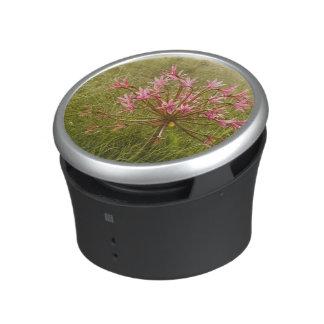 Candelabra Flower (Brunsvigia Radulosa) Bluetooth Speaker
