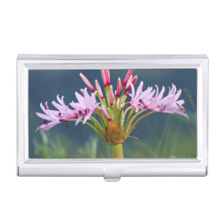 Candelabra Flower (Brunsvigia Radulosa), Umgeni Business Card Holder