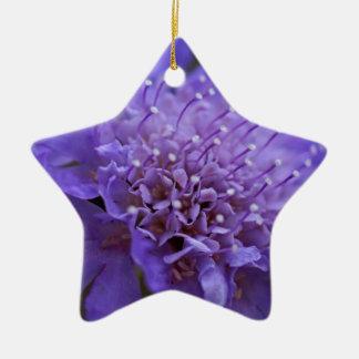 Candid Ceramic Star Decoration