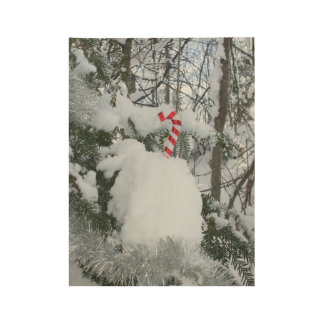 Candy Cane Decoration Wood Poster