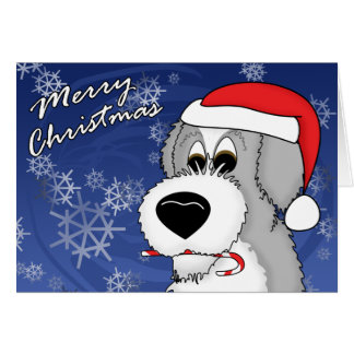 Candy Cane Old English Sheepdog Christmas Card