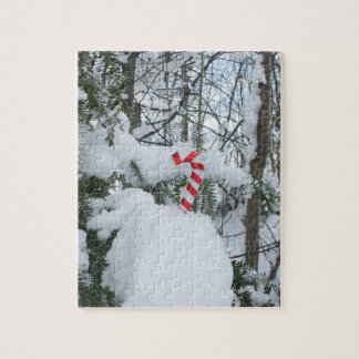 Candy Cane Outdoor Decoration Jigsaw Puzzle