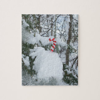 Candy Cane Outdoor Decoration Puzzle