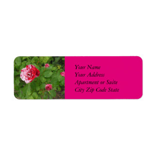 Candy Cane Rose Address Label