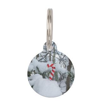 Candy Cane Seasonal Decoration Pet Nametag
