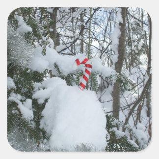 Candy Cane Seasonal Decoration Square Sticker