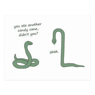 Candy Cane Snake Postcard