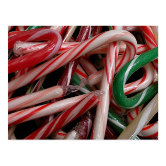 Candy Canes Christmas Holiday White Green and Red Postcard