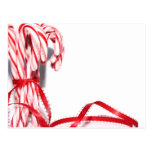 Candy Canes Postcard