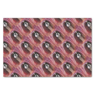 Candy-Cav Tissue Paper