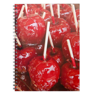 Candy coated fruit at the Stuttgart Beer Festiva Notebook