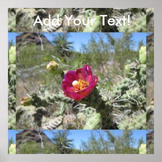 Cane Cholla Desert Flower Poster