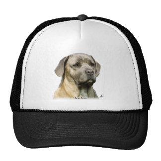 Cane Corso 8R057D-10 Mesh Hats