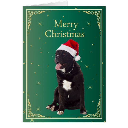 Cane Corso dog in santa hat holiday Christmas Card