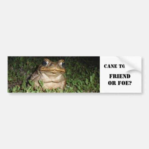 Cane Toad Bumper Sticker