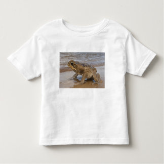 Cane Toad Rhinella marina, previously Bufo Toddler T-Shirt