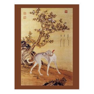 Cangshuiqiu 苍水虬 ~ Greyhound ~Giuseppe Castiglione~ Postcard