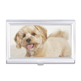 Canis familiaris business card holder