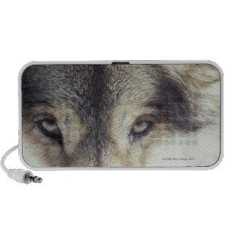 Canis Lupus Mini Speaker