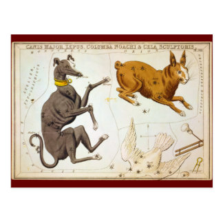Canis Major, Lepus, Columba Noachi & Cela Sculptor Postcard