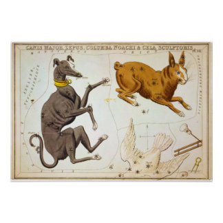 Canis Major, Lepus, Columba Noachi & Cela Sculptor Poster